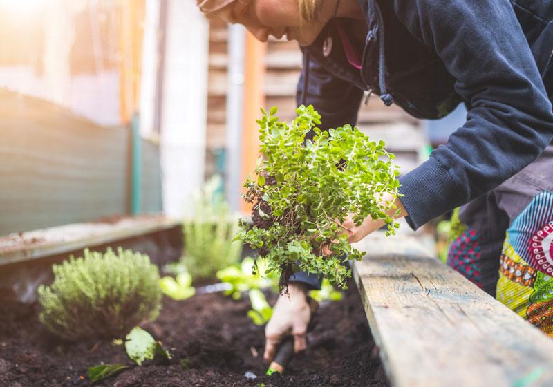Du bricolage pour aménager son jardin